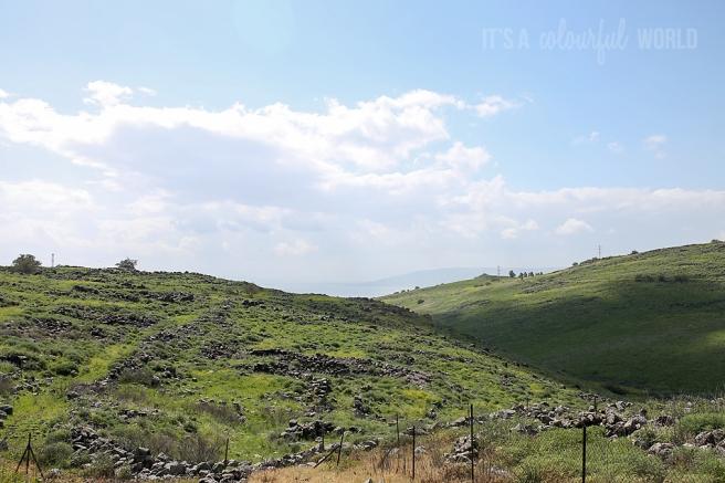ICAW - Galilee.jpg