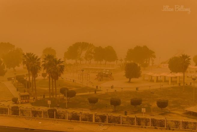 IACW - 2 Sandstorm.jpg