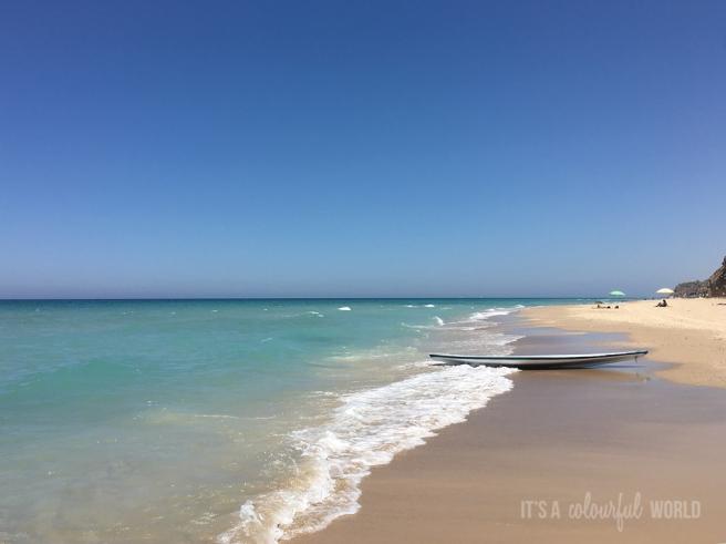 IACW - sea blue.jpg