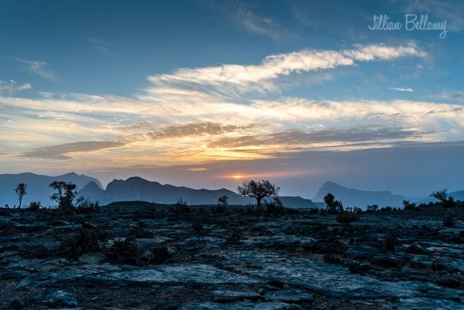 IACW - sunset