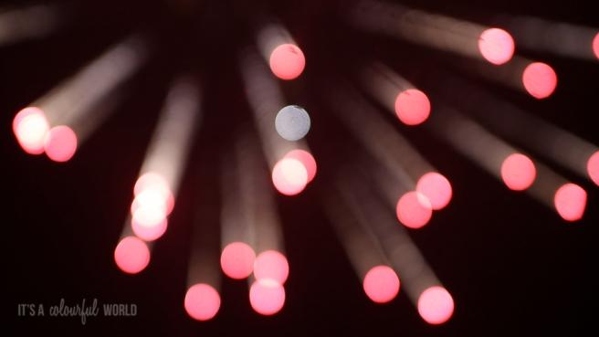 IACW_firework.jpg