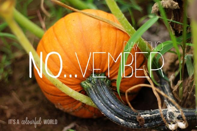pumpkin - november.jpg