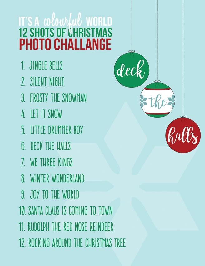 IACW - 12 shots of Christmas Photo List.jpg