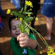 IACWLOVE_flowers