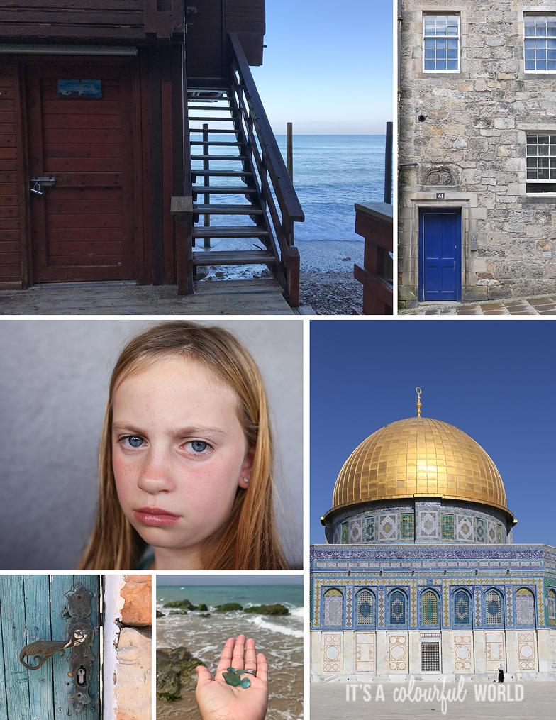 IACW_cool collage.jpg